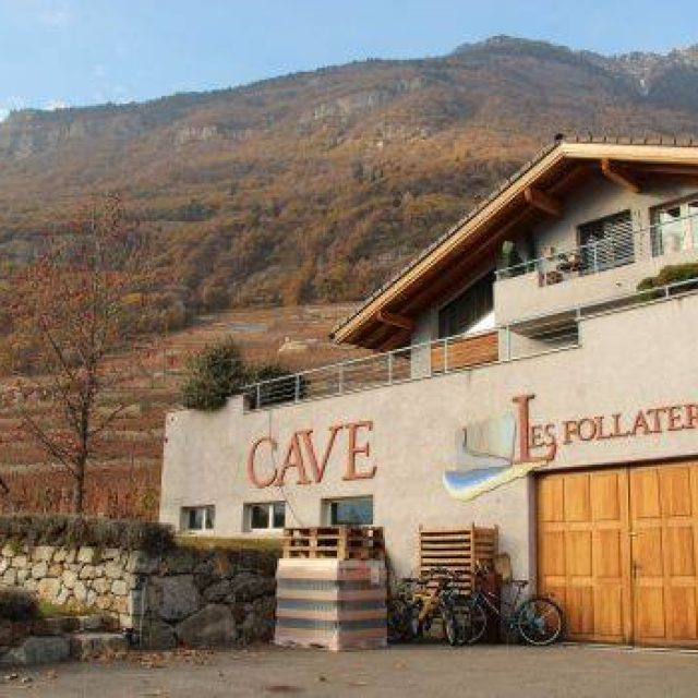 Cave les Follaterres